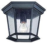 Acclaim 5275BK/SD Dover Collection 1-Light Ceiling Mount Outdoor Light Fixture, Matte Black