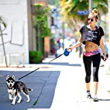 Pet Leashes 16 ft with Nylon Lead and Comfortable Handle - DURABLE,, NO TANGLE - Light-Weight Retractable Leash for Small and Medium Dogs.