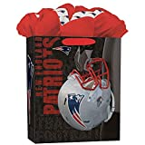Turner Licensing New England Patriots Large GoGo Gift Bag (8931017)