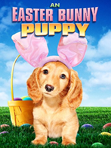 An Easter Bunny Puppy -