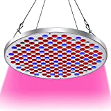 Cheap 50W LED Grow Light,Upgrade UFO Plant Grow Lights 177 LEDs with Big Chip Grow Lamp Indoor Plants Growing Light Bulbs with Swicth for Germination,Vegetative &Flowering by Niello