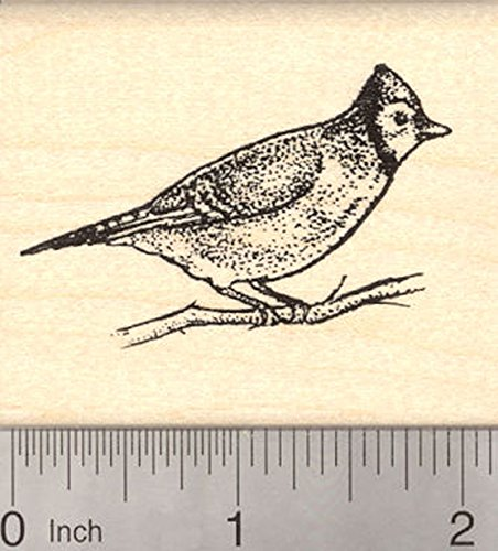 Blue Jay Bird Rubber Stamp, Perched on Branch