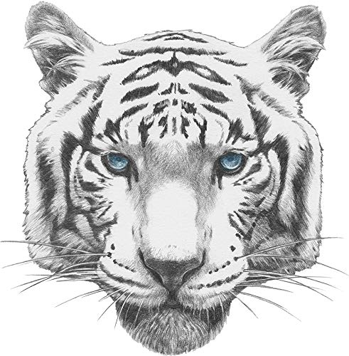 Cool Majestic Realistic White Bengal Tiger Icon #1 (8
