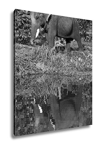 Ashley Canvas Thai Elephant He Is Going To Drink The Water In The Lake, Wall Art Home Decor, Ready to Hang, Black/White, 20x16, AG5257378 by Ashley Canvas