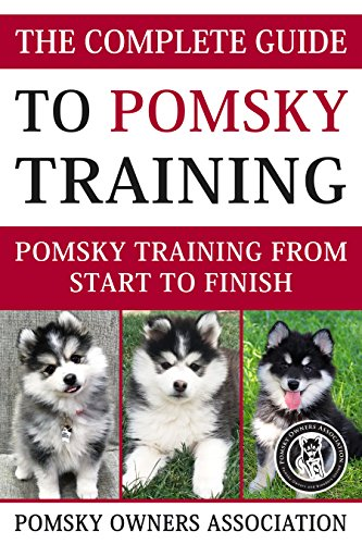 Complet Breeders Guide - The Complete Guide To Pomsky Training: Pomsky training from start to finish