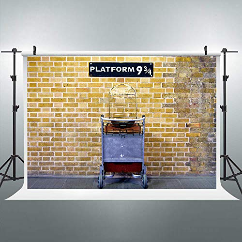 Riyidecor Wizard 9 3/4 Magical Platform Backdrop King's Cross Station 8x6ft Secret Passage to Wizarding Magical School Photography Background Birthday Party Photo Studio Shoot Blush Vinyl Cloth