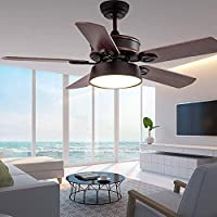 RainierLight Modern Ceiling Fan 5 Wood Blades Acrylic Cover Remote Control for Indoor LED 3 Changing Light (Warm,Yellow,White Light) for Indoor Mute Energy Saving Electric Fan