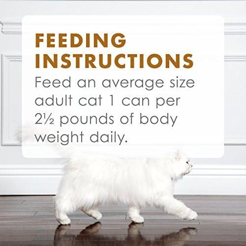 Purina Fancy Feast Gravy Lovers Adult Canned Wet Cat Food 11