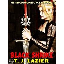 GUARDIANS PATH [THE SWORDMAGE CYCLE BOOK II]