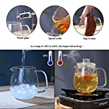 Glass Water Pitcher With Lid & Infuser