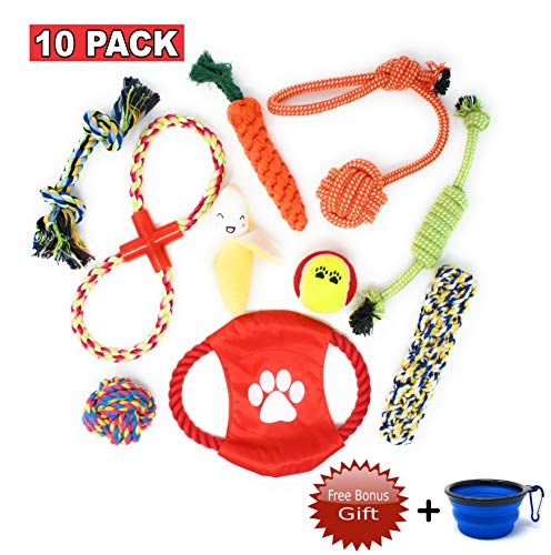 10 Dog Chew Toys with Carrying Bowl Gift - Puppy Dog Toys Value Pack for Small & Medium Dogs - 10 Pack Dog Toys for Chewing and Teething