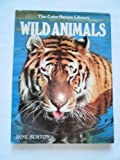 Wild Animals, Outlet Book Company Staff, 051725056X
