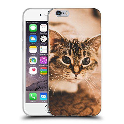 Just Phone Cases Coque de Protection TPU Silicone Case pour // V00004229 gris tacheté chat sur le tapis // Apple iPhone 6 4.7""