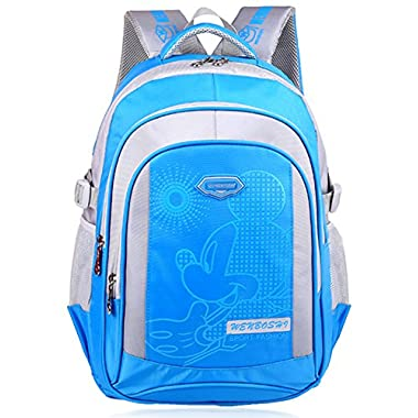 The 2015 Newest Mickey Mouse Disney Double Shoulders Backpack for School Students