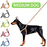 Offer Your Dog The #1 Harness Leash For Pets & Go For Your Next Walk With Comfort & Safety!   Have you tried to train your naughty pet, but all your efforts were in vain?   Do you feel that the daily walk to the park is a stressful and embarr...