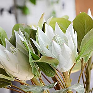 Mzwodmu 1Pc King Protea Artificial Flower Fake Plant DIY Wedding Bouquet Party Decor Beige 109