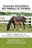 Flames Maestro: My Miracle Horse, Sandra McCollum, 147916805X