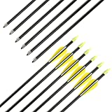 Fiberglass Arrows Archery 30 Inch Target Shooting Practice Arrows Recurve Bows Suitable for Children Woman Beginner