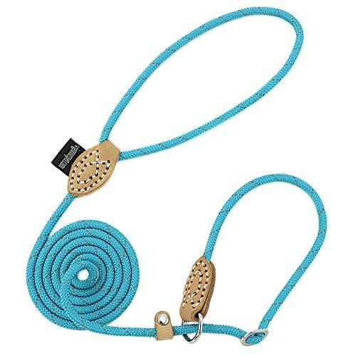 Grand Line Reflective Dog Slip Rope Lead Leash, Mountain Climbing Dog Training Leash, Adjustable Pet Nylon Leash for…