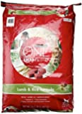 Purina ONE Total Nutrition Lamb & Rice Adult Formula