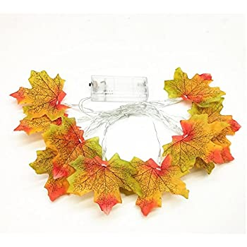 Amazon.com: Astra Gourmet Maple Leaves LED Garland, Fall ...