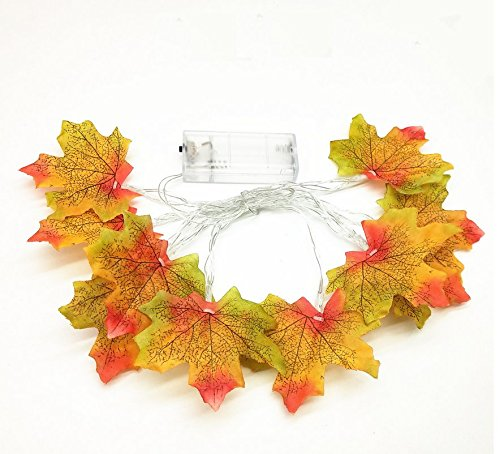 Astra Gourmet Maple Leaves LED Garland, Fall String lights, Battery Powered Lighted Garland with 20 LED Bulbs for Thanksgiving Christmas Festival Decorations, 9.8 Feet(Yellow Green Leaves) (Light Astra Table)