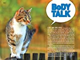 How to Speak Cat: A Guide to Decoding Cat Language