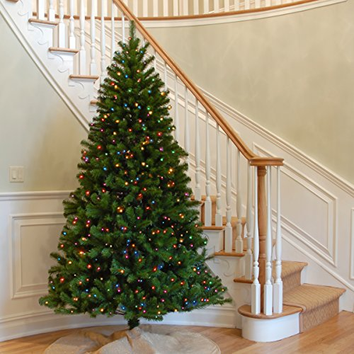 National Tree 7.5 Foot North Valley Spruce Tree with 550 Multicolor Lights, Hinged (NRV7-301-75) by National Tree Company (Image #1)