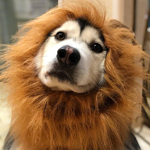 Funny Fancy Lion Mane Large Big Size Dog Cosplay Costume Hair Wig Clothes For Birthday Party, Halloween, Christmas, New Year Festival, Golden Retriever, (Extra Large Christmas Dog Costumes)