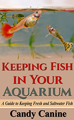 Keeping Fish in Your Aquarium: A Guide to Keeping Fresh and Saltwater Fish