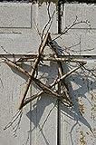 The Naturals Primitive Birch Wild Twig Star Wreath