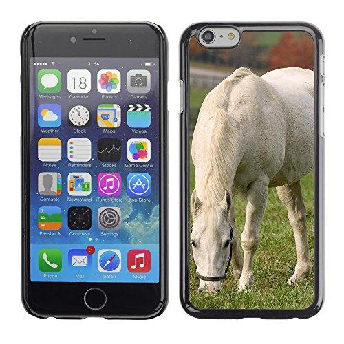 "Premio Sottile Slim Cassa Custodia Case Cover Shell // V00003990 cheval blanc pâturage // Apple iPhone 6 6S 6G PLUS 5.5"""