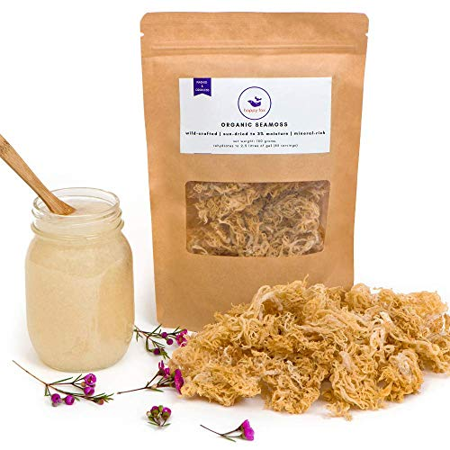 Happy Fox Organic Sea Moss | Premium Quality, Great Value - Makes 4.5 Mason Jars of Raw Seamoss Gel | 100% Wildcrafted, Clean, Sundried and Odorless | Seamoss Vitamins and Minerals Supplement