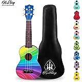 Honsing Soprano Ukulele Beginner Hawaii kids Guitar Uke Basswood 21 inches with Gig Bag- multicolor matte finish