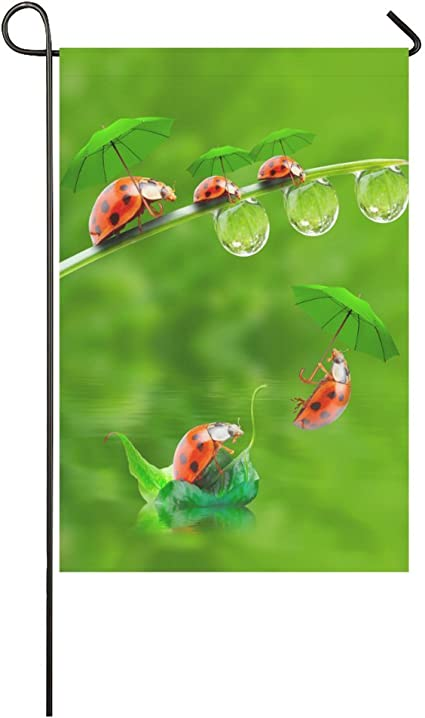 Amazon Com Interestprint Little Ladybug With Umbrella Long Polyester Garden Flag Banner 12 X 18 Inch Funny Ladybird In Nature Decorative Flag For Wedding Anniversary Home Outdoor Garden Decor Garden Outdoor