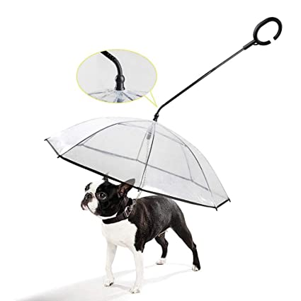547c8bc4b315 Amazon.com: DYYTRm Umbrella for Dogs with Leash,Pet Traction ...