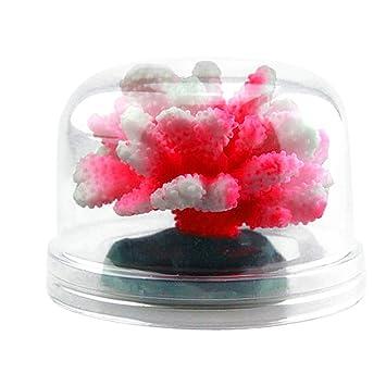 Piebo Acuario Luminoso Flores Coral Decoración Acuario Paisaje Coral ...