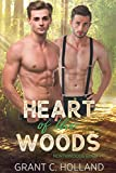 Heart of the Woods: Northwoods, Book 1