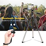 iPhone Tripod,Fotopro Camera Tripod 48.9 Inch with Phone Tripod Mount,Bluetooth Remote,Pan Head Quick Release Plate for DSLR Camera Pentax Sony Panasonic Nikon Sony Canon Samsung Huawei P20 iPhone X