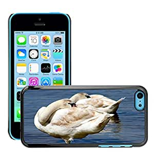 Hot Style Cell Phone PC Hard Case Cover // M00129608 Animal Bird Swans // Apple iPhone 5C