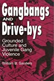 Gangbangs and Drive-bys: Grounded Culture and Juvenile Gang Violence (Social Problems & Social Issues)
