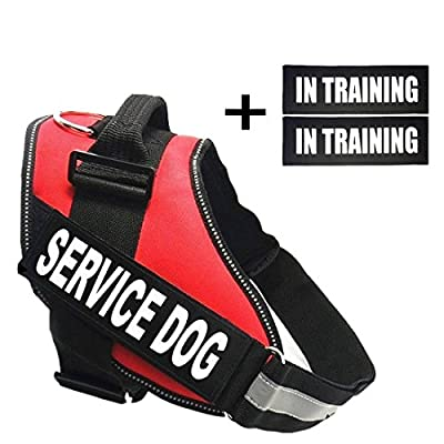 Fairwin Service Dog In Training Dog Patches, Reflective and Removable Service In Training Tags for Vests and Harnesses