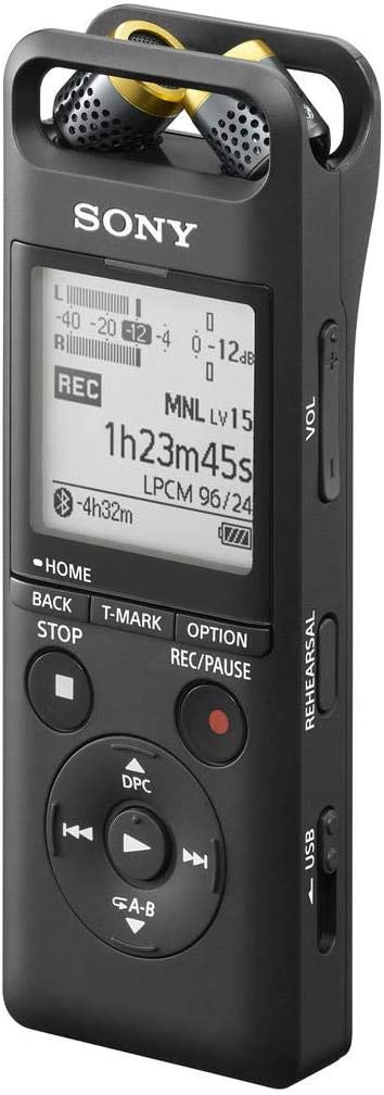 Sony PCM, 2 Portable Studio Recorder, One Size (PCM-A10)
