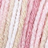 Caron Jumbo Ombre Yarn - Medium Worsted Gauge 4 thickness of the yarn- 100% Acrylic - 12 oz - Rosewood - Machine Wash & Dry