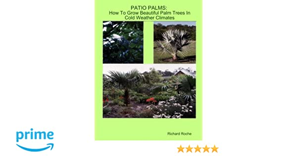 Patio Palms: How To Grow Beautiful Palm Trees In Cold Weather Climates:  Richard Roche: 9780692332498: Amazon.com: Books