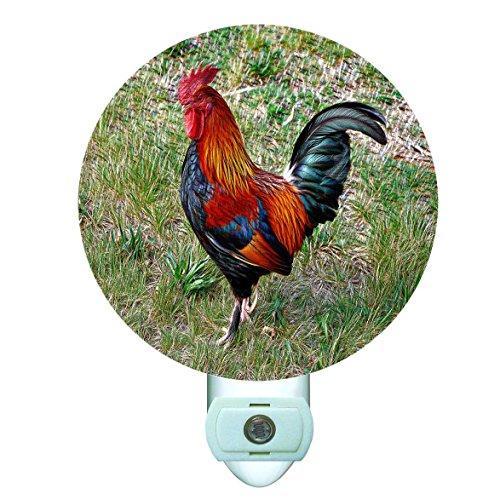 (Barnyard Rooster Decorative Round Night Light)