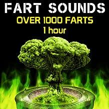Fart Sounds - Over 1000 Farts (1 Hour)