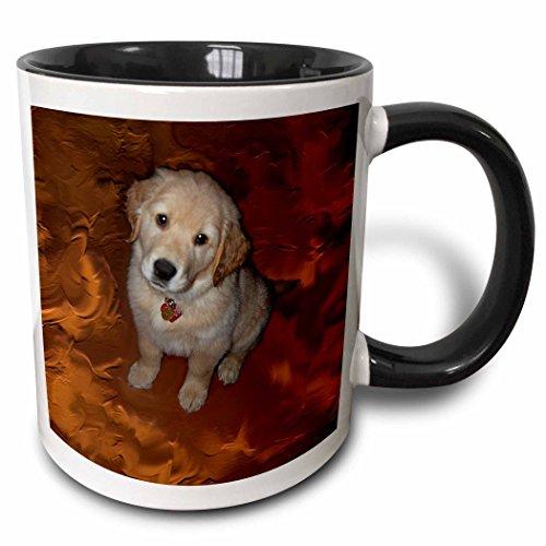 3dRose Golden Retriver Puppy Black