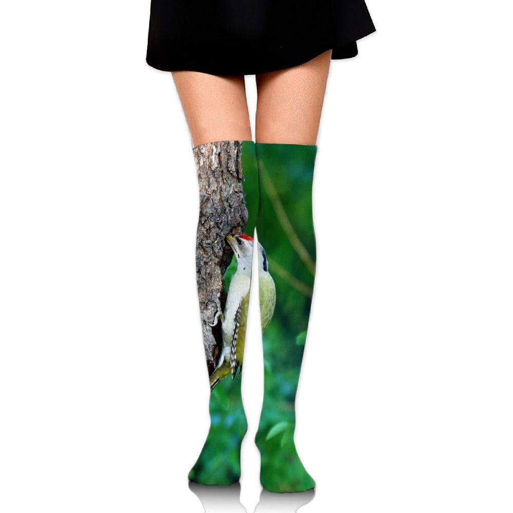 High Elasticity Girl Cotton Knee High Socks Uniform Woodpecker Tree Hole Women Tube Socks