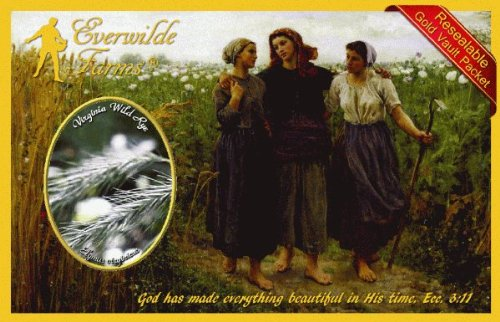 Everwilde Farms - 1/4 Lb Virginia Wild Rye Native Grass Seeds - Gold Vault